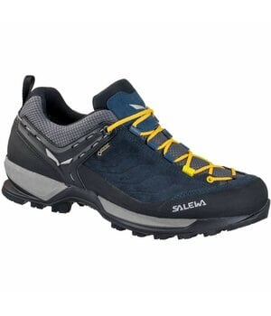 Кроссовки Salewa MS MTN Trainer GTX