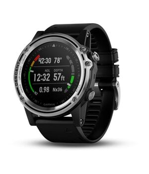 Декомпресиметр Garmin Descent Mk1 Silver with Black band